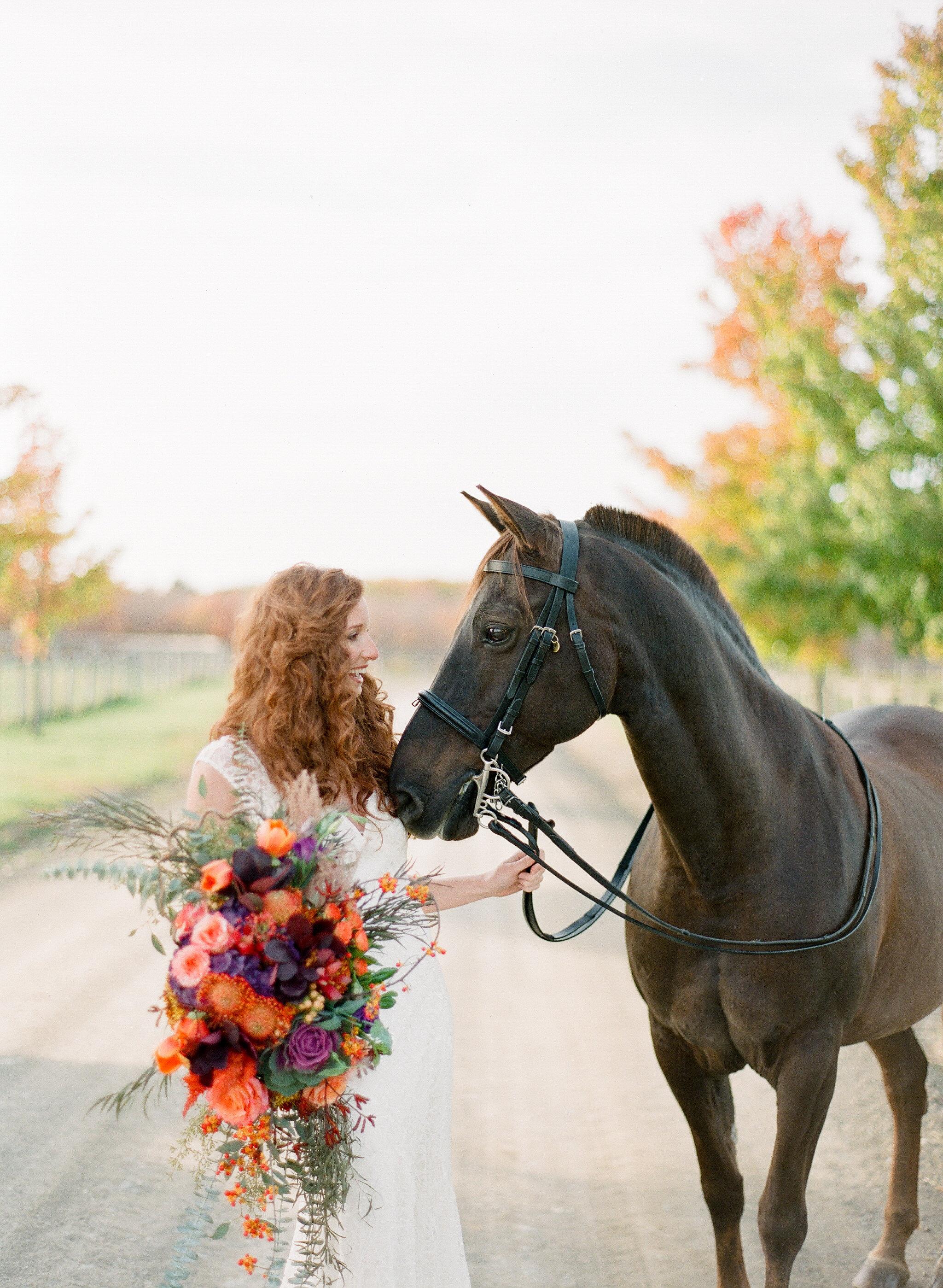Лошадка Для Детей картинки, бесплатные обои и фото 26